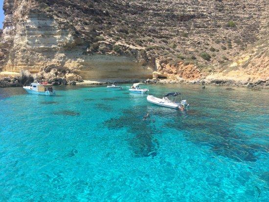 Nino Paranzoto Gite in Barca: photo0.jpg