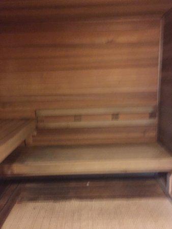 The Westin Lombard Yorktown Center: Sauna