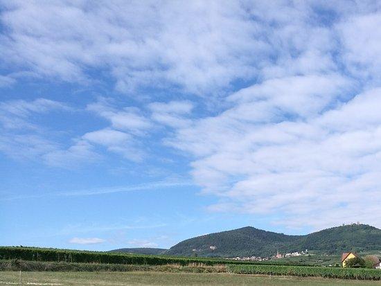 Dieffenthal, França: Les alentours...pour se balader après un bon repas