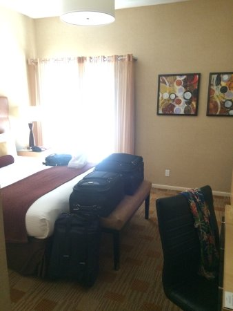Elan Hotel - A Greystone Hotel foto