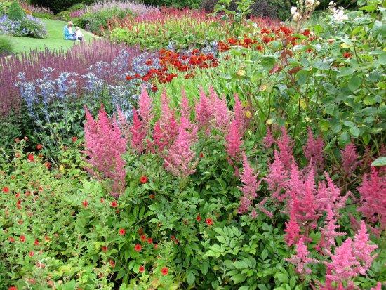 RHS Garden Harlow Carr: color splashes