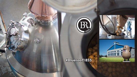 Malden, Canada: Blue Roof Distillery