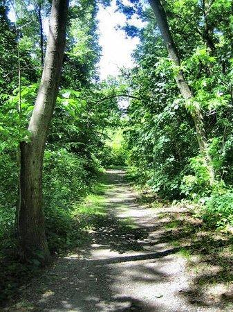 Sayre, PA: Destiny Kinal River Loop Trail