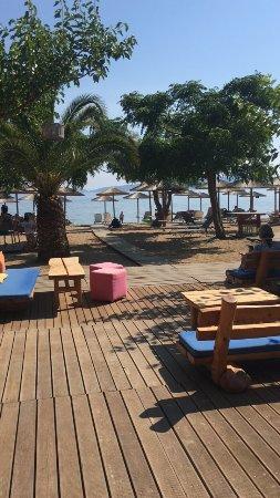 Natura Restaurant: photo0.jpg