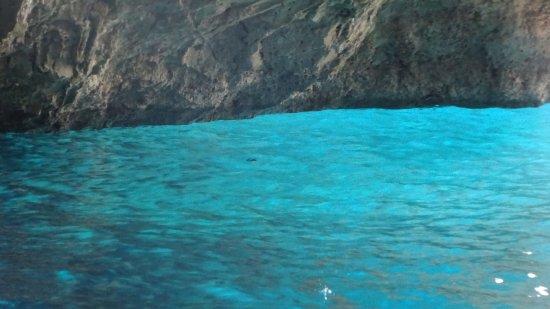 National Marine Park of Alonissos and Northern Sporades ...