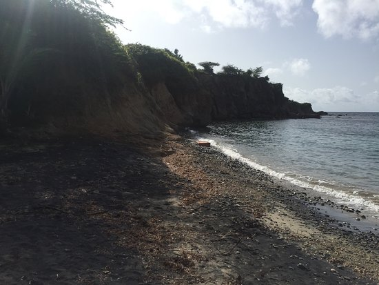 black singles in vieques county Only padi dive shop on the island we offer bio bay, snorkeling, biking, hiking, kayak, sup, and diving tours.