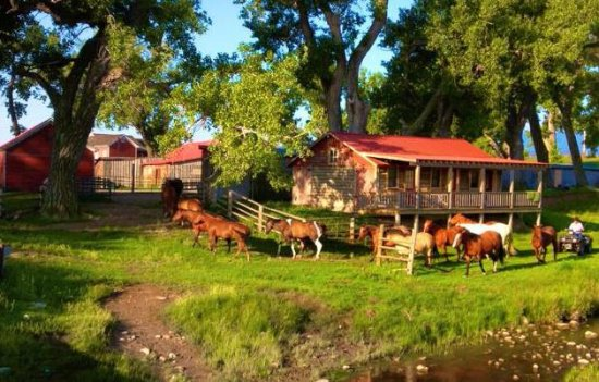 The TA Guest Ranch: Le houses del ranch