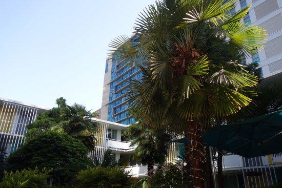 The Burrard: le patio