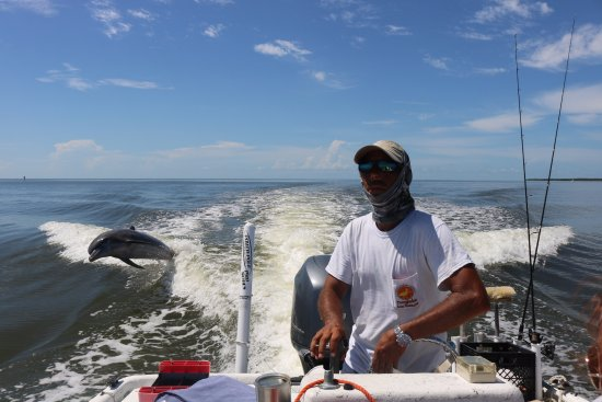 Marco Island Boat Tours: Captain Ed and the Dolphins