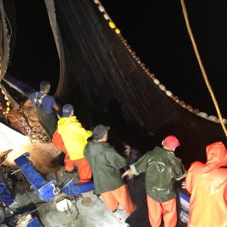 Associazione Pescatori San Francesco di Paola