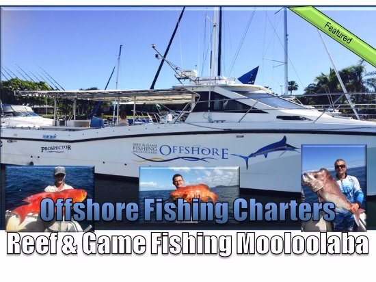 Offshore Reef & Game Fishing Mooloolaba
