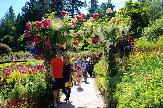 The Butchart Gardens: one of the many rose arches:)