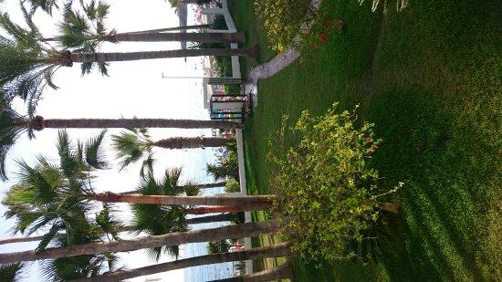 Apartamentos Playa Torrecilla: DSC_0700_large.jpg