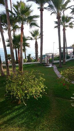 Apartamentos Playa Torrecilla : DSC_0700_large.jpg