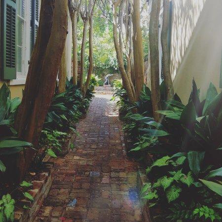 Audubon Cottages: IMG_20170817_085203_381_large.jpg
