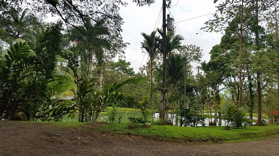 Chachagua, Kosta Rika: 20170824_010009_large.jpg