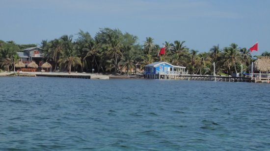 White Sands Dive Shop: Captain Carlos - always a smooth ride!