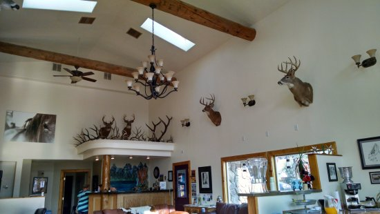 Sundance Motel Updated 2018 Prices Hotel Reviews Pinedale Wy Tripadvisor