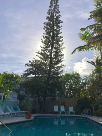 Cheston House Gay Resort: Poolside in the morning