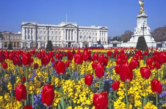 Self-Guided Buckingham Palace and...