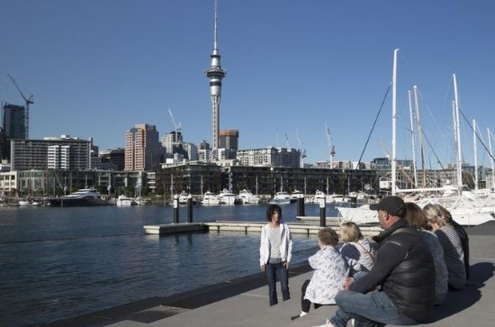 Auckland Sights and Bites Small-Group Walking Tour