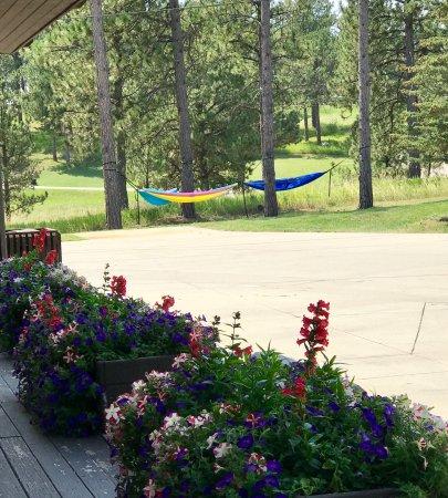 Bavarian Inn, Black Hills: Relaxing hammocks on the edge of the property