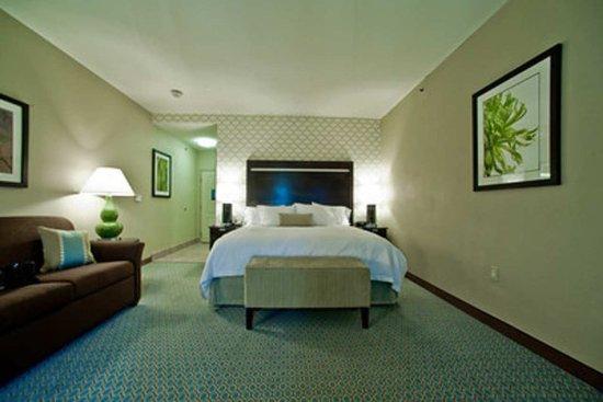 Hampton Inn & Suites by Hilton Denison: King Study Guest Room