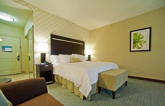 Hampton Inn & Suites by Hilton Denison: Accessible King Guestroom