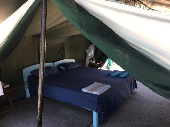Baja Camp: photo2.jpg