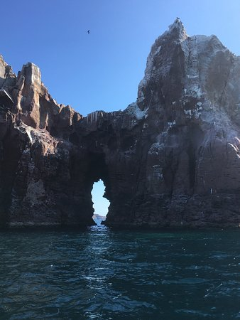 Baja Camp: photo4.jpg