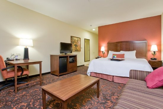 Hampton Inn & Suites New Braunfels: One King Study