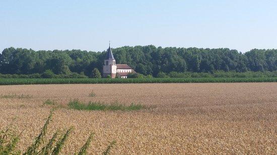 Avolsheim, France: Dompeter en pleine campagne
