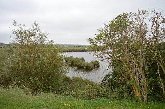 Chemin de Fer de la Baie de Somme : le paysage