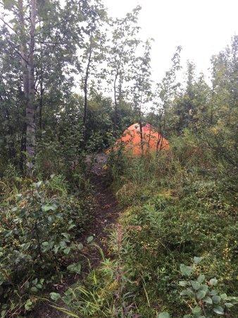 Wonder Lake Campground: photo1.jpg