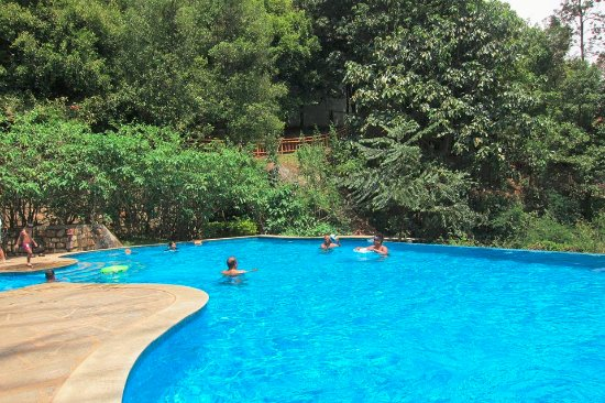 Beautiful pool experience picture of kurumba village - Best hotels in ooty with swimming pool ...