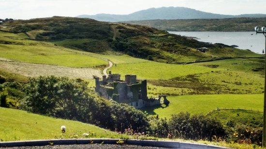 Clifden Castle: IMG_20170825_102840_large.jpg