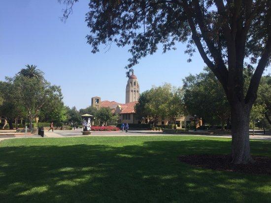 Palo Alto, CA: center