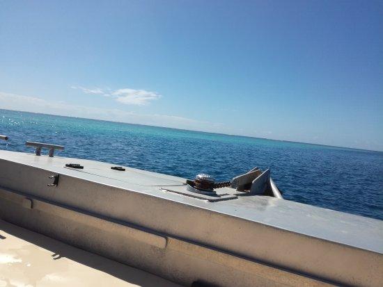 Dzaoudzi, Mayotte: IMG_20170825_105706_large.jpg