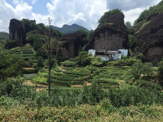 Wuyi Mountain Scenic Resort: photo1.jpg