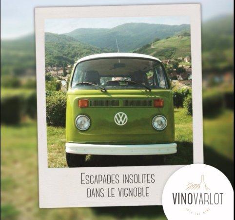 VinoVarlot