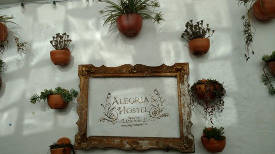 Alegria's Hostel: Wall art on the back patio