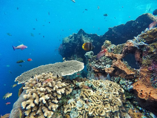 Aqua Life Bali