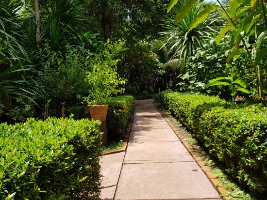 Ban Khiet Ngong, Laos: garden path at Kingfisher Ecolodge