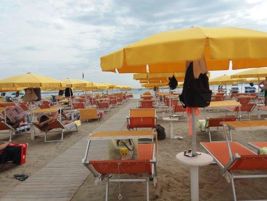 Nuova gestione 2015 sole mare tutta l 39 ospitalit - Bagno florida cesenatico ...