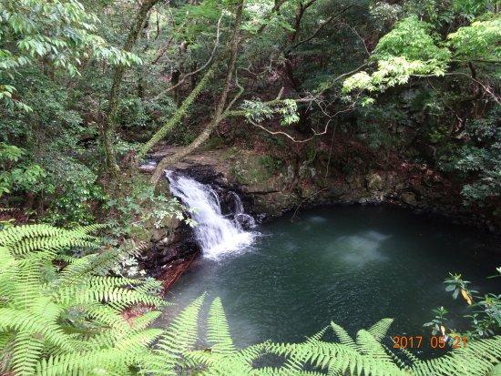 Obuchi Mebuchi no Taki Falls