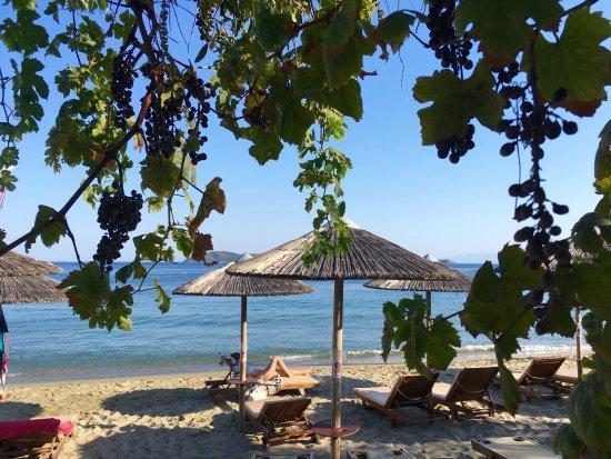 Megali Ammos Beach: Liegen vor der Gastro Swell