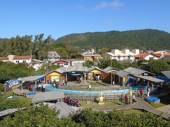 Fundação Projeto TAMAR - Florianópolis