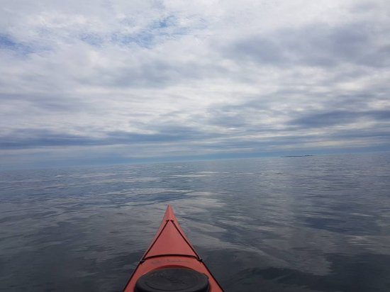 Pleasant Paddling: looking for seals
