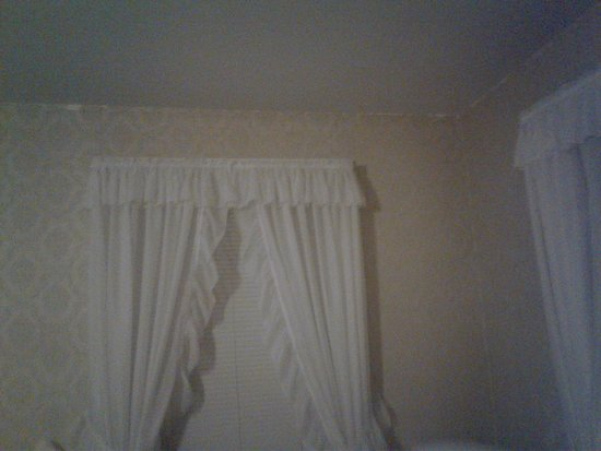 Cinnamon Ridge Bed and Breakfast: hard to see the peeling wallpaper all throughout this odd room they gave us.