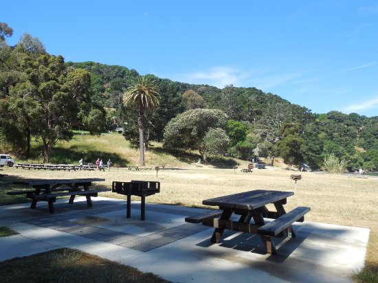 Angel Island State Park: The picnic area